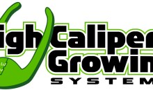 High Caliper Growing