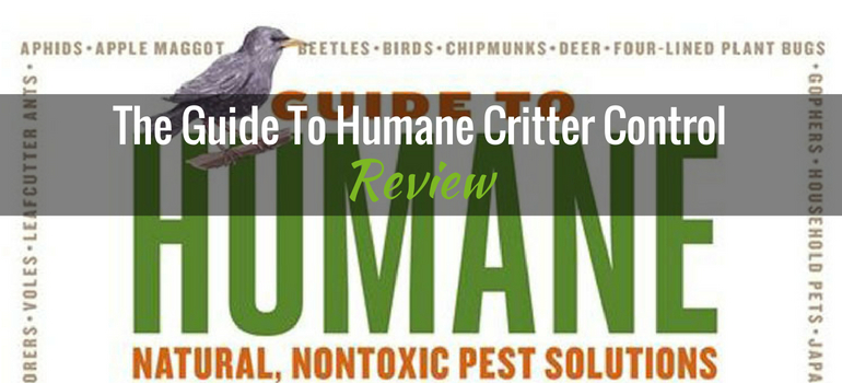 Humane-Critter-Control-featured