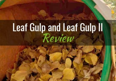 Leaf Gulp and Leaf Gulp II Featured Image