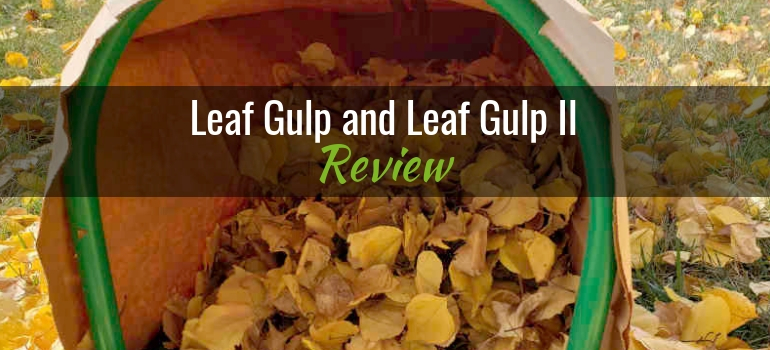 Leaf Gulp and Leaf Gulp II Featured Image