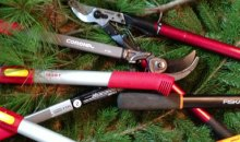 Best Loppers for Pruning: Guide & Recommendations 2017