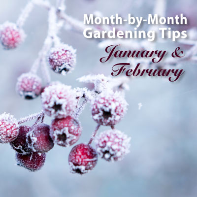 Month-by-Month-Jan Feb Featured