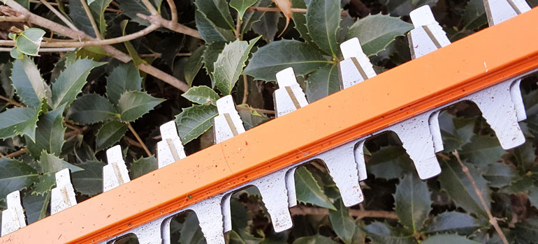 Redback Hedge Trimmer-sharp-teeth