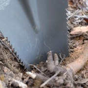 Radius-Root-Slayer-Shovel-cutting-through-fiberous-roots