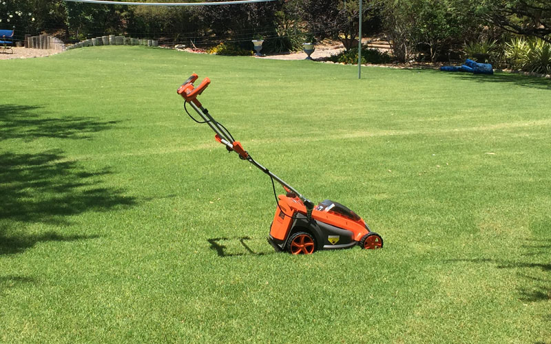 Redback 40V Lithium Ion Mower E137C Cut Lawn