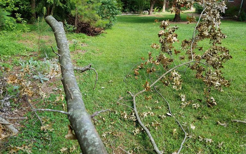 Troy-Bilt Chipper Shredder thick branches