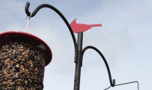 APS Bird Feeder Pole System from Wild Birds Unlimited: Product Review