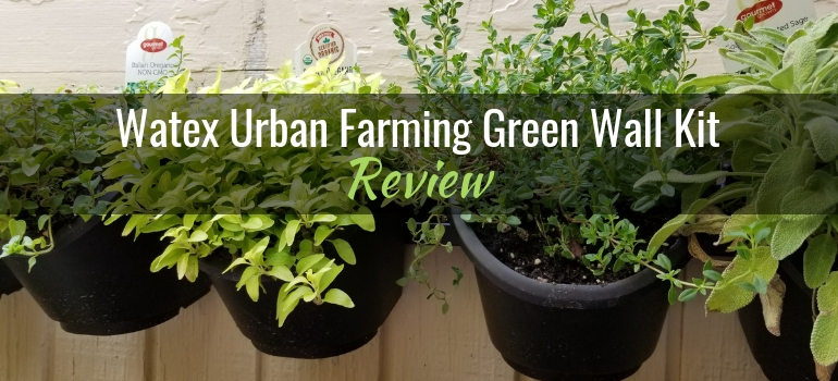 Watex Urban Farming Green Wall Kit Featured Image