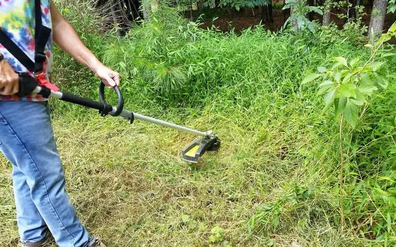 Yard-Force-120v-string-trimmer-cutting-tall-weeds