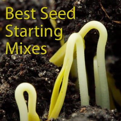 Best Seed Starting Mixes: Review by GPR
