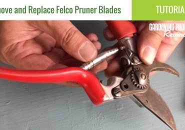 Remove replace felco pruner blades