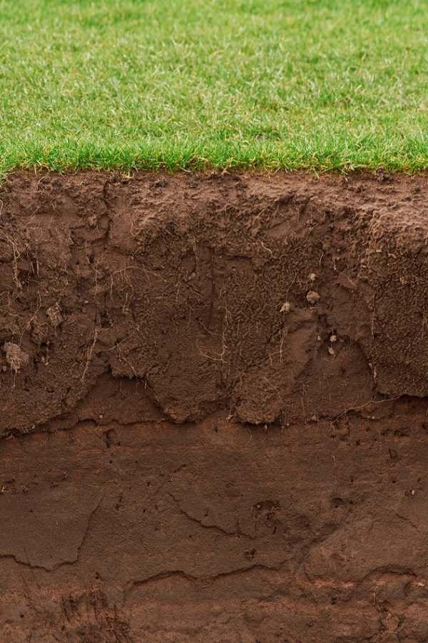 soil texture digging deeper