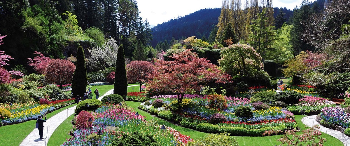 If You Are A Beginner Or A Seasoned Gardener And Are Looking For New And  Attractive Ideas For Gardening And Landscaping, Then You Can Contact Us.