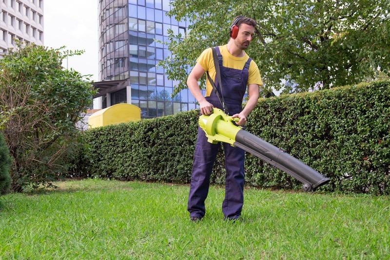 Gardener using his leaves blower in the garden