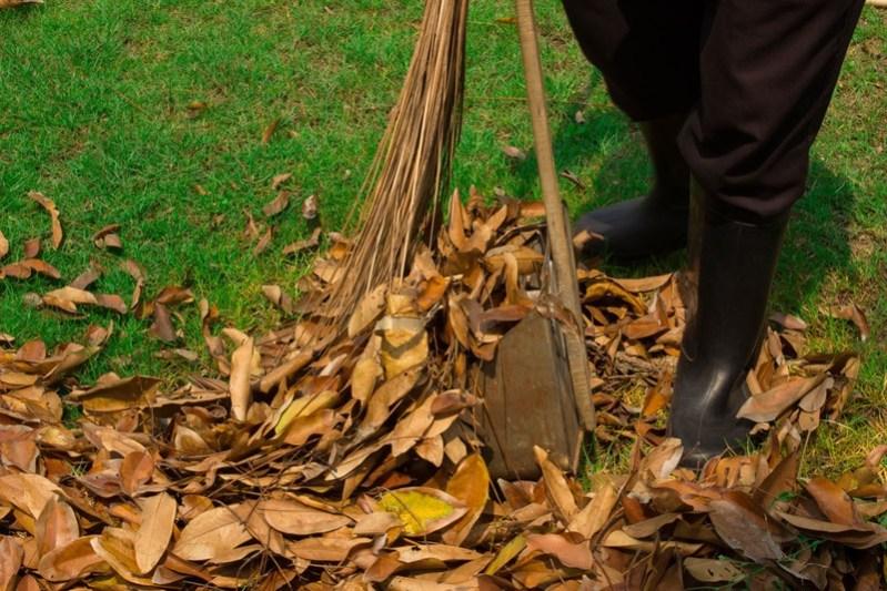 gardener sweeping-leaves on the floor in the garden