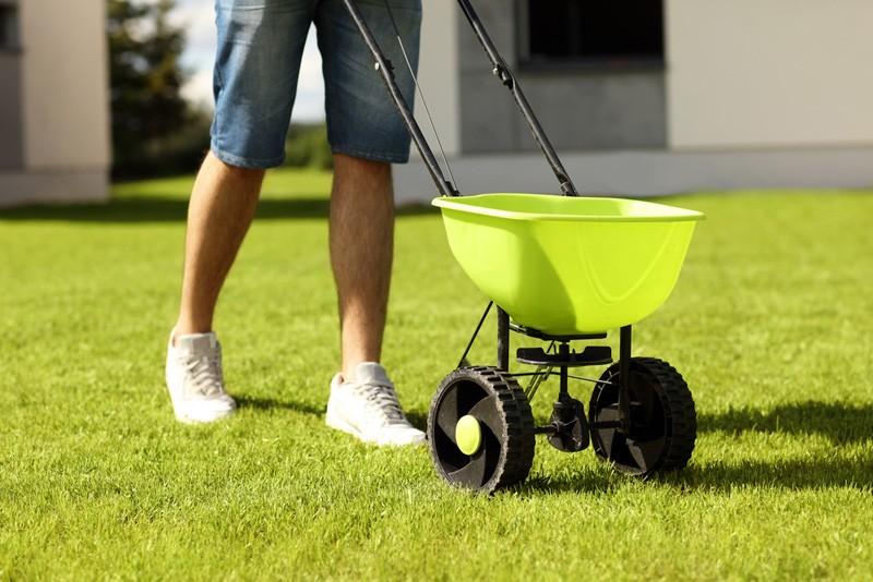 seeding-grass-in-the-backyard