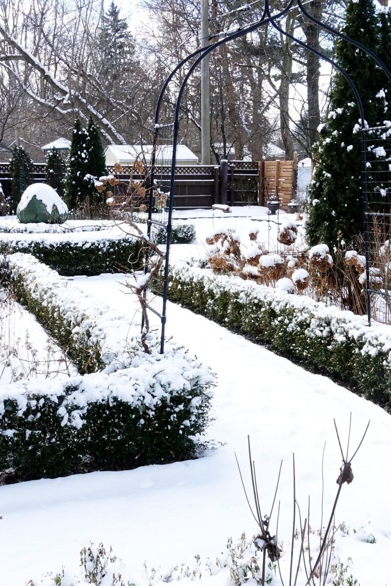 The January Garden