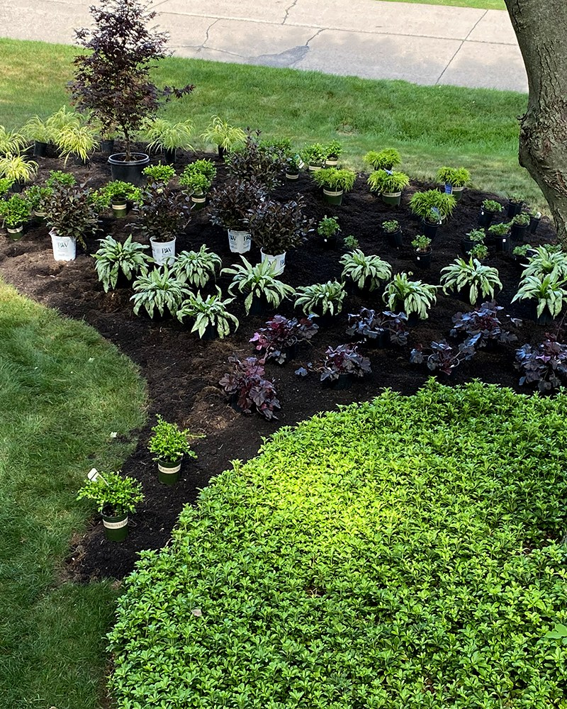 How to Visualize Your Garden Plans