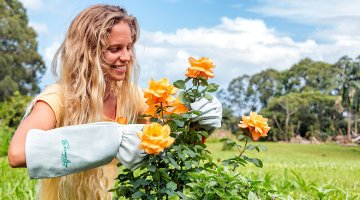 5 best garden gloves Reviews 2018: Complete Buying Guide