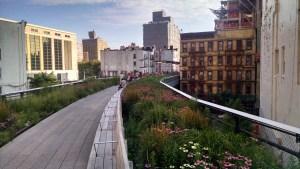 Perennial beds along the High Line