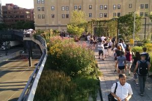 The High Line runs from West 14th St. to West 34th st.