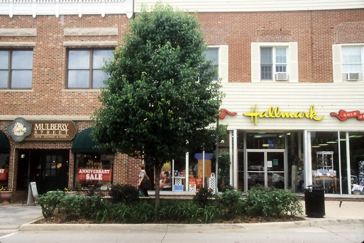 Street trees compete with other plants and are subject to heat and drought stress