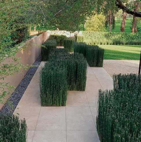 thomas rainer contemporary garden