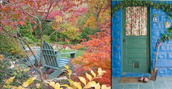 OLD Back Garden