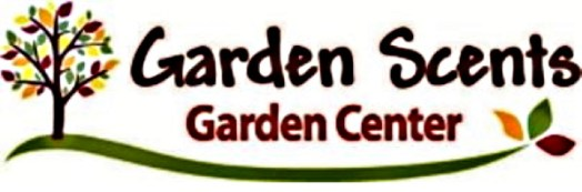 Evergreen 40% and Shrubs 25 % Off