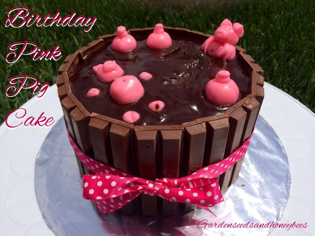 birthday pink pig cake tub pig cake garden seeds and honey bees