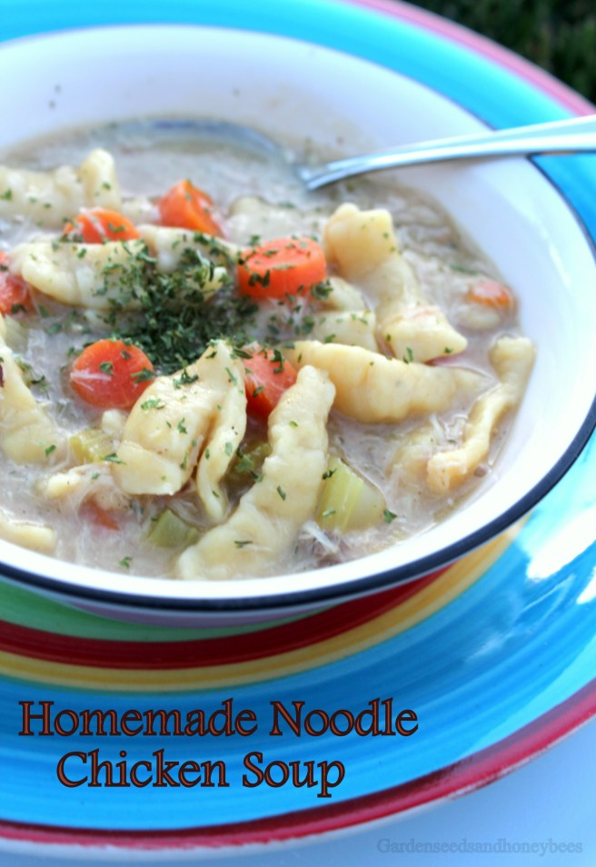 Homemade Noodle Chicken Soup