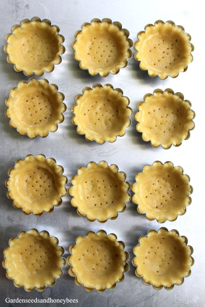 Lemon Tarts with Cookie Crust