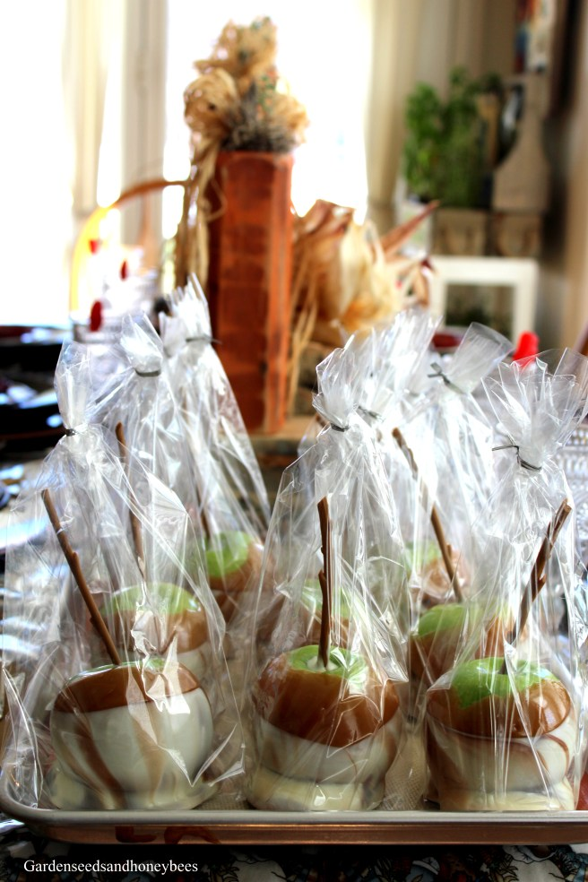 Chocolate Swril Caramel Apples