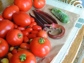 Tomatoes, okra and cukes