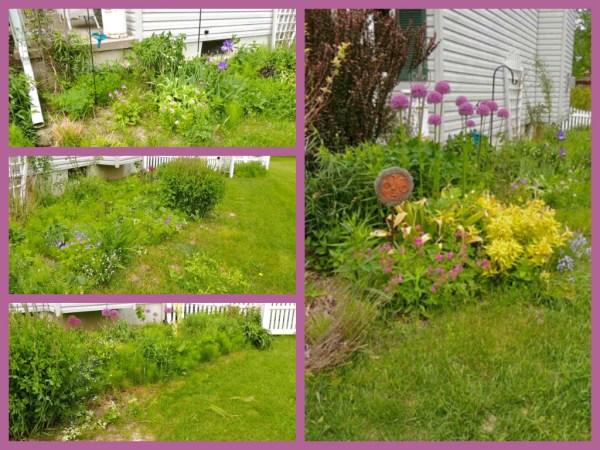 side garden spring