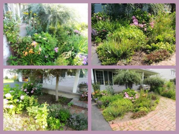 front garden collage