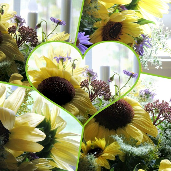 yellow sunflower vase collage