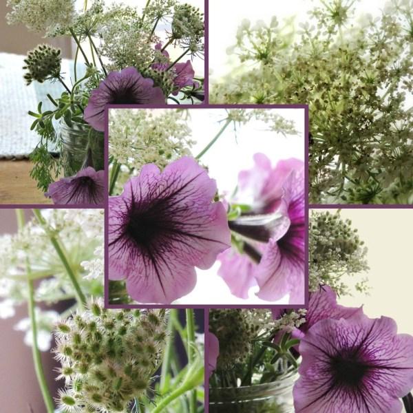 petunia vase collage