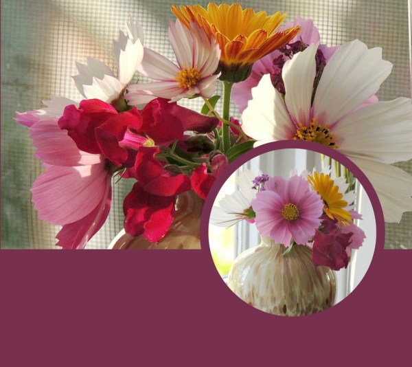 small posy collage