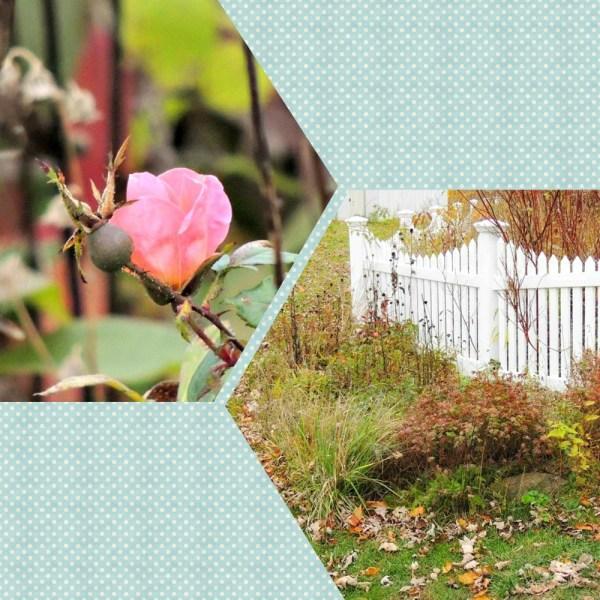 deer garden collage