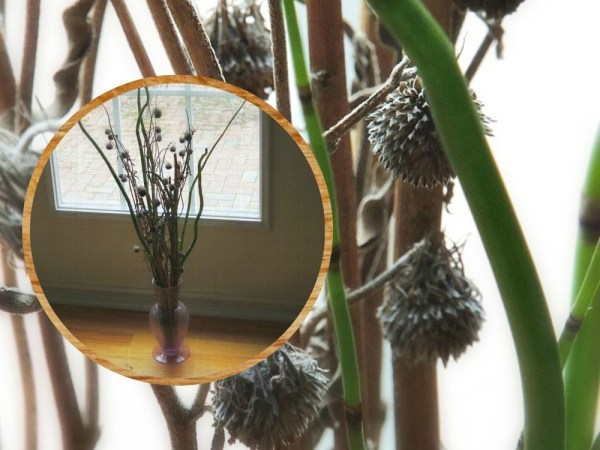 horsetail vase collage