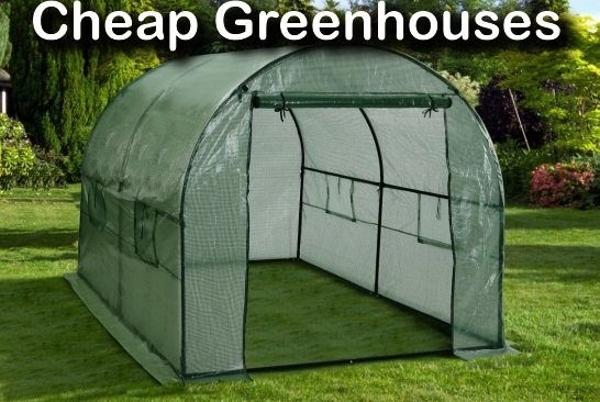 Build A Cheap Greenhouse To Grow Garden Produce All Year Round