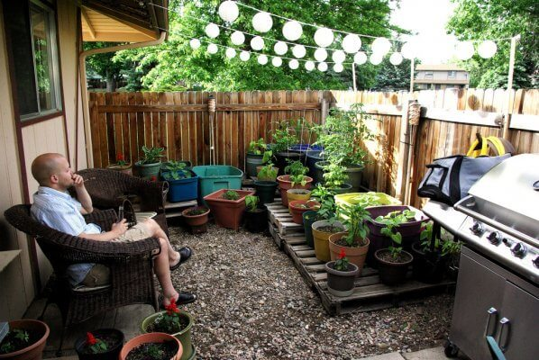 Small Garden In A Small Area Of Your Home Gardens Nursery
