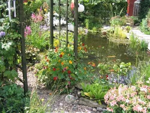 Bounce Steps for Water Garden Design
