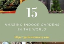 15 Amazing Indoor Gardens In the World