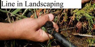 Drip Irrigation the bottom linein Landscaping