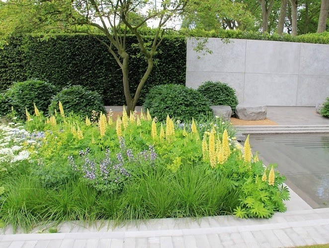 Tips for A Successful Garden Layout