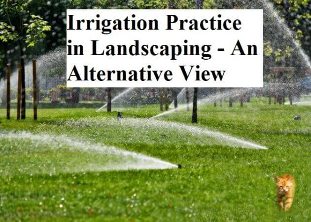 Irrigation Practice in Landscaping - An Alternative View