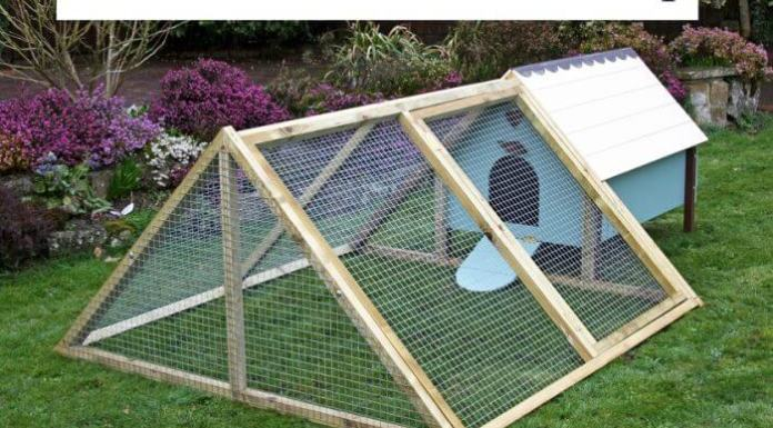Small Frame Chicken Coop