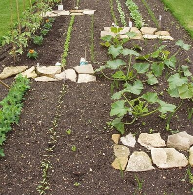 How to Prepare a New Gardening Plot